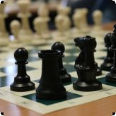 Chess for Champions...